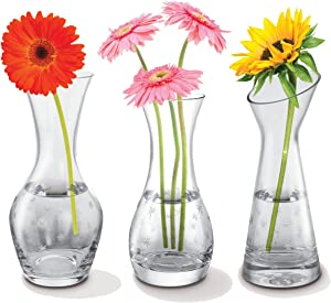 Kovot Set of 3 Glass Bud Vases - 3 Distinct Star-Etched Vases