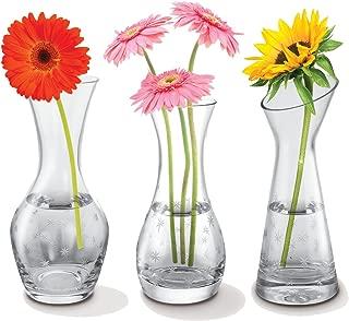 Kovot Set of 3 Glass Bud Vases - 3 Distinct Star-Etched Vases
