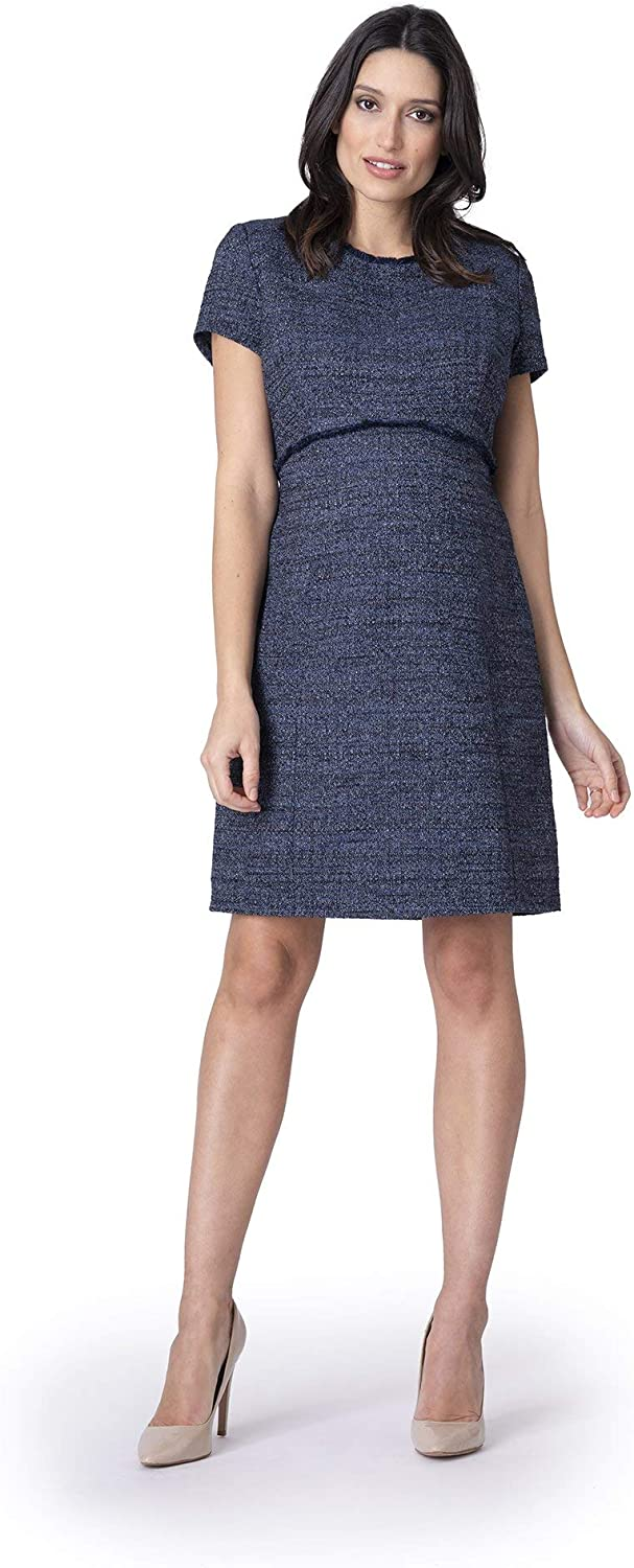 Seraphine Womens Casual A-line Maternity Dress