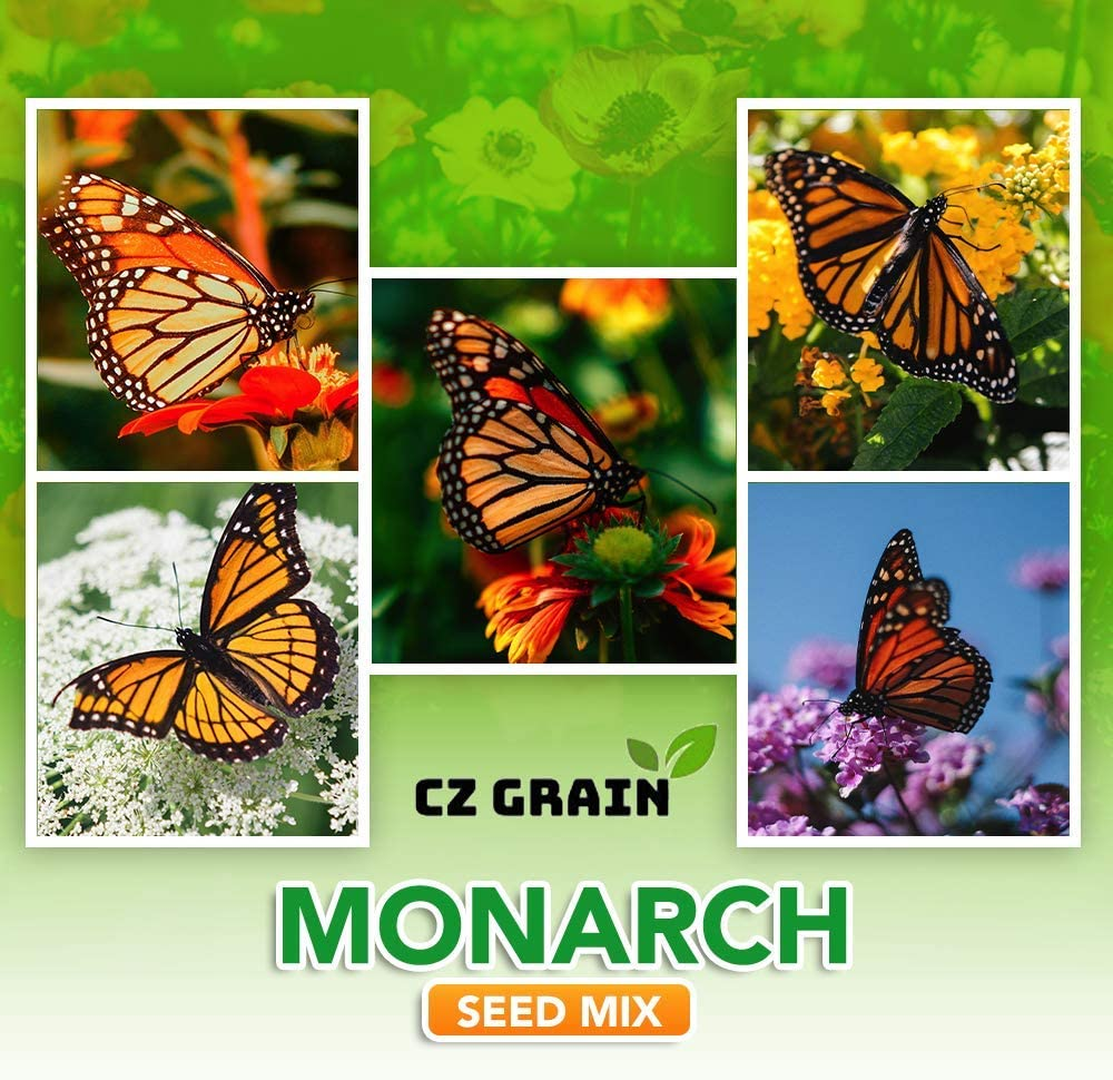 Monarch Butterfly Garden Kit -28 of New product!! New color a Perennial Species Milkweed