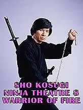 Sho Kosugi Ninja Theater Vol.8 Warrior On Fire