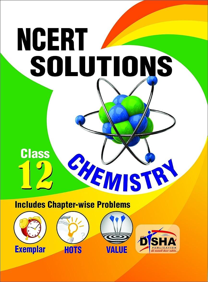 アプローチ石の神社NCERT Solutions with Exemplar/ HOTS/ Value based Questions Class 12 Chemistry (3rd Edition) (English Edition)