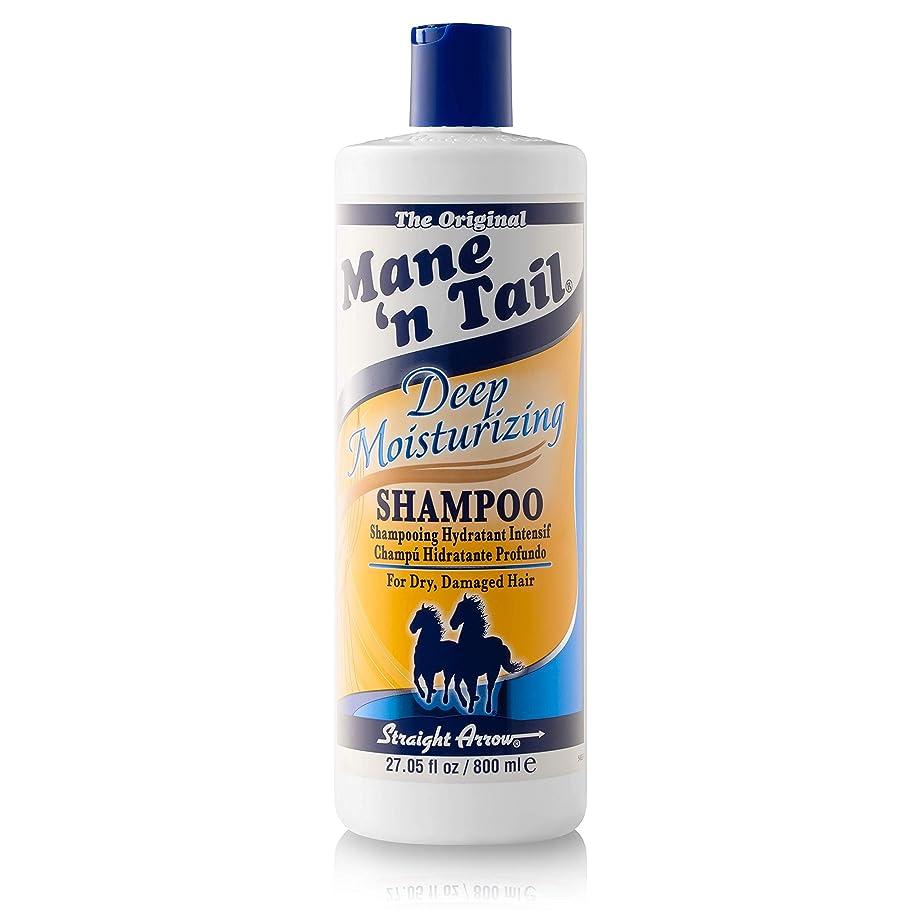 泥だらけバーチャル移住するメインテイル Mane 'n Tail Deep Moisturizing Shampoo 27.05 oz 800ml 並行輸入品
