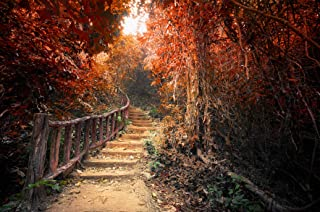 3D Red Forest Stairs 187 Wall Paper Print Decal Deco Indoor Wall Mural Self-adhesive Wallpaper AJ WALLPAPER AU Zoe (416x25...