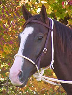Mustang Nylon Breaking Hackamore