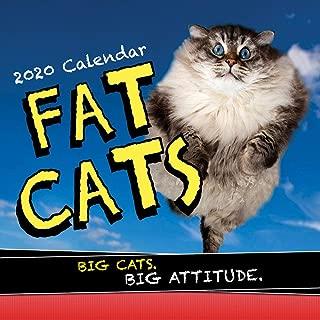 2020 Fat Cats Wall Calendar: Big Cats. Big Cattitude.