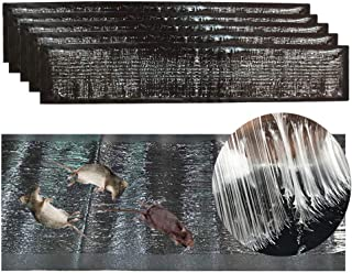 comprar comparacion Trapweb 5 trampas de Ratas y ratón Muy eficaz - 120 cm x 28 cm