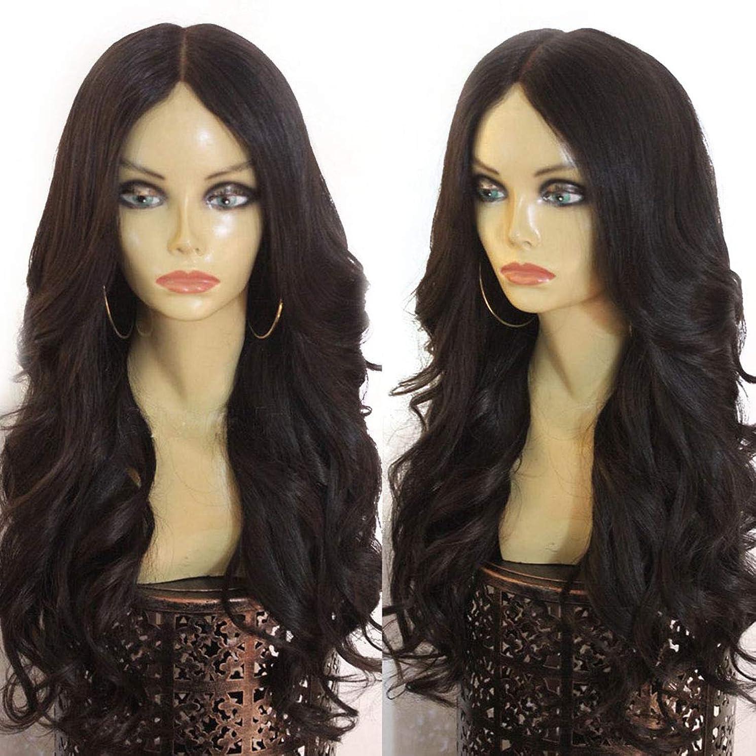 ピカソ理想的サンダーBOBIDYEE さん波状の長い巻き毛のふわふわ黒のかつらフロントレース化学繊維の毛髪のかつら合成髪のレースのかつらロールプレイングかつら (色 : 黒, サイズ : 24 inches)
