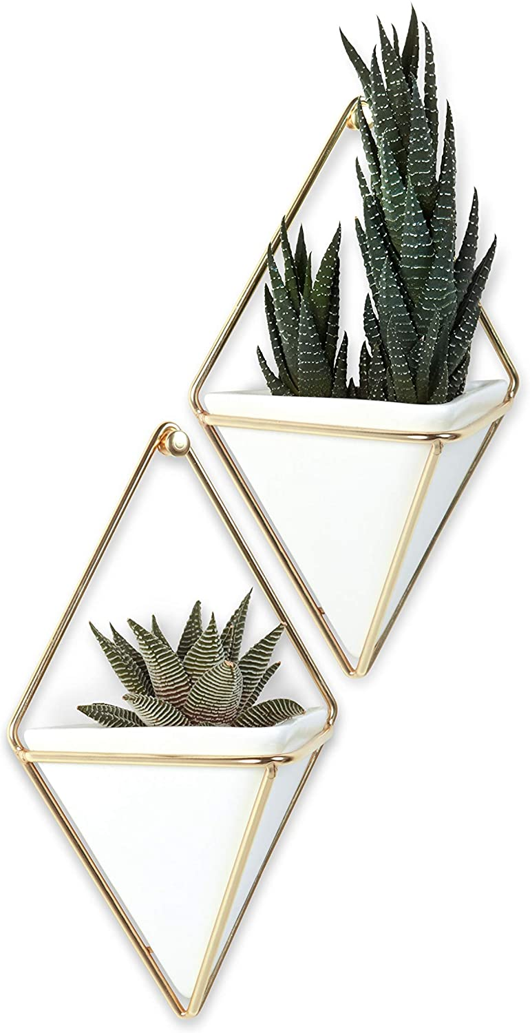 Umbra Trigg Hanging Planter Vase Containe High quality new Decor Wall Ranking TOP2 Geometric