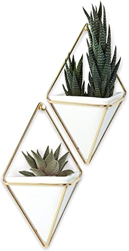 Umbra Trigg Hanging Planter Vase & Geometric Wall Decor Container, Small, White/Brass Decor