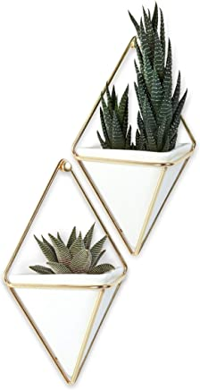 Umbra Trigg Hanging Planter Vase & Geometric Wall Decor Container, Set of 2, Small, White/Brass