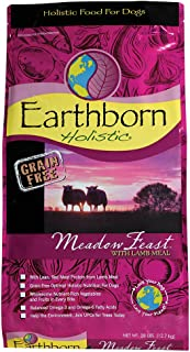 Earthborn Integral perro Alimentos Natural