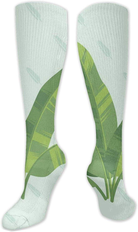 Banana Leaf Set Knee High Socks Leg Warmer Dresses Long Boot Stockings For Womens Cosplay Daily Wear