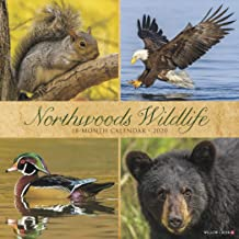 Northwoods Wildlife 2020 Wall Calendar
