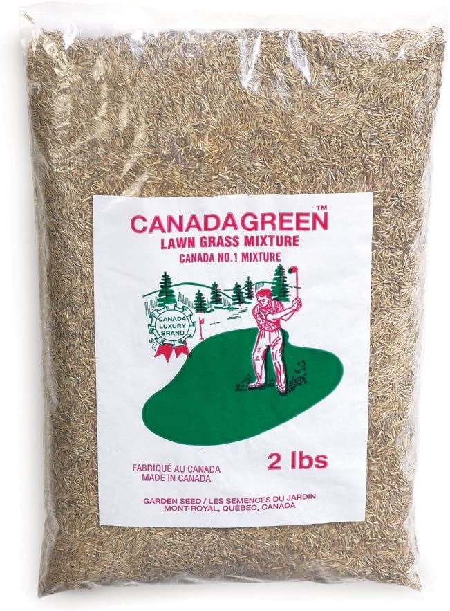 All items in the store Canada Green Grass Seed - Bag Brown 2 Ranking TOP6 Lb.