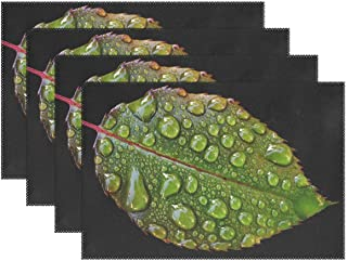 Rosenblatt Drip Raindrop Wet Drop Of Water Beaded Placemats Set Of 4 Heat Insulation Stain Resistant For Dining Table Durable Non-slip Kitchen Table Place Mats