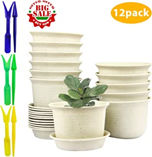 Flower Pots,Pots with Drainage Hole,Plastic Flower Pots with Pallet (3.5inch)