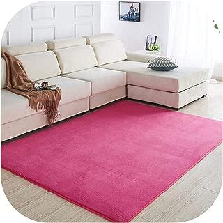 Coral Velvet Carpet Living Room Coffee Table Blanket Bedroom Bedside mat Bed Front Room Rug Tatami mat 140cmx200cm Pink Rug,3,40x60cm
