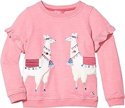 Pink Llamas