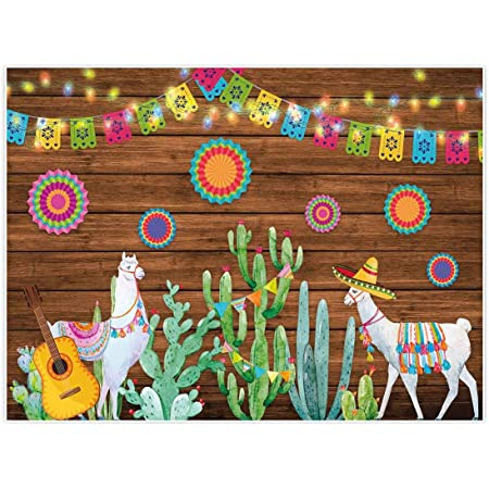 Allenjoy 8x6ft Fabric Cactus Floral Fiesta Party Supplies Backdrop for Mexican Photo Photography Newborn Kids Portrait Pictures Shoot Baby Shower Decorations Background Studio Photoshoot Props Favors