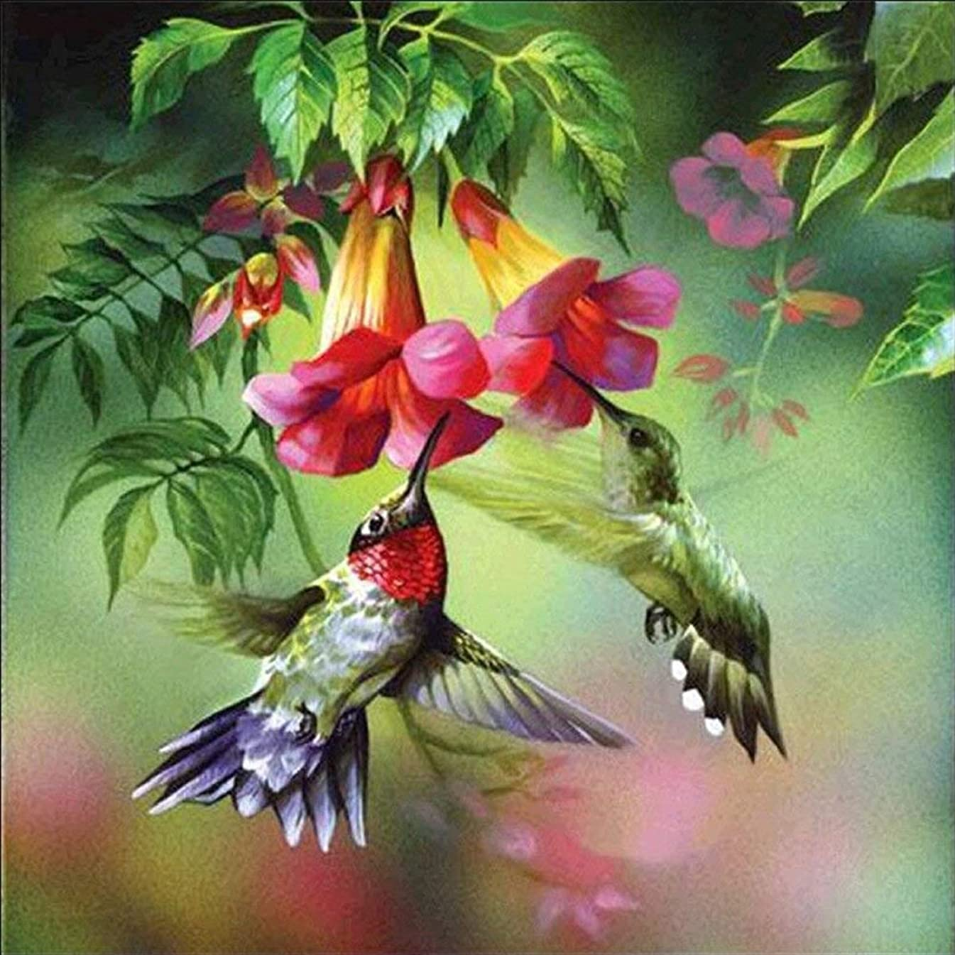 DIY 5D Diamond Painting by Number Kits, Bird Opera Flower Full Diamond Embroidery Painting Cross Stitch Arts Craft Canvas Wall Decor 11.8 x 11.8 inch josppycle4338495