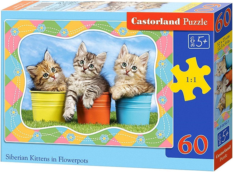 Castorland Siberian Kittens in Flowerpots Puzzle (60 Piece)