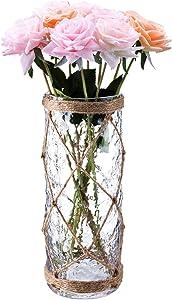 Diamond Star Rustic Glass Vase Decorative Cylinder Vase with Creative Rope Net(Large)