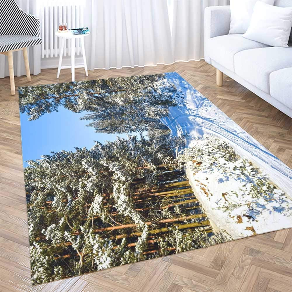 Amazon Com Area Rug Shorping 5x7 Area Rug Red Area Farmhouse Rug Winter Snow Road Landscape In Winter Scene Forrest Forest Kids Rugs Fun Area Rug Rugs For Bedroom Cute Area Rug Kitchen