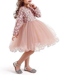 TTYAOVO Chicas Cordón Bordado Princesa Fiesta Vestir Flor Niña Boda Vestir