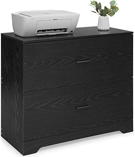 Giantex 2-Drawer Lateral File Cabinet Printer Stand W/Adjustable Bars and A4, Legal,Letter File Folder for Home&Office Use Storage (Black)