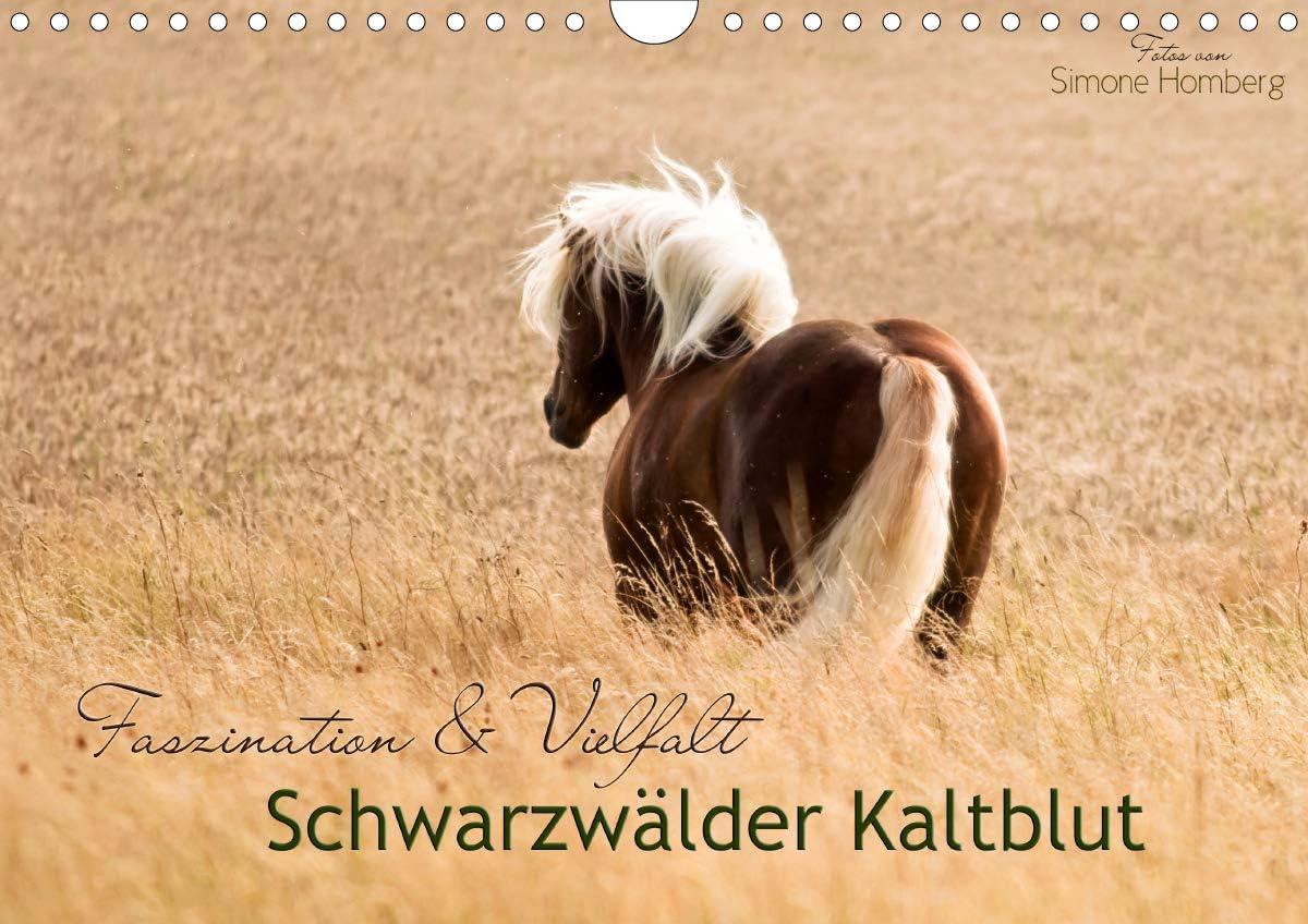 Faszination und Excellence New popularity Vielfalt - Kaltblut Schwarzwälder Wandkalender