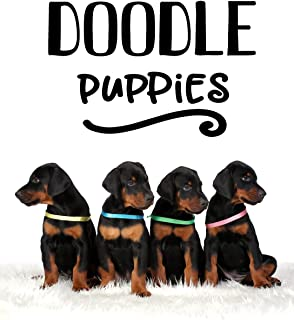 Doodle Puppies: Blank Doodle Draw Sketch Book