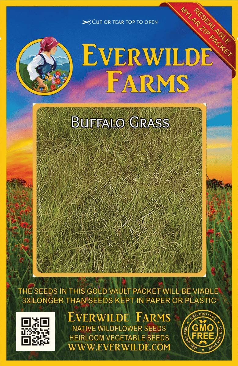 Everwilde Farms Recommendation - gift 1000 Buffalo Seeds V Native Grass Gold