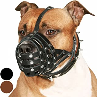 Best dog muzzle pitbull Reviews
