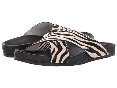 J/Slides Nova (Zebra Pony Leather) Women