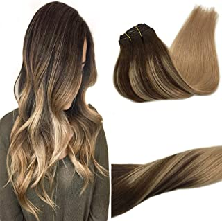 GOO GOO 120g Clip in Hair Extensions Ombre Chocolate Brown to Dirty Blonde Real Remy Human Hair Extensions Clip in Natural...