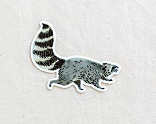 Raccoon Animal Sticker - Waterproof Vinyl Sticker - Adventure Sticker - Camping and Hiking Gear - Water Bottle Decal - Car Decal
