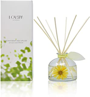 LOVSPA Lemon Mint Leaf Scented Sticks Reed Diffuser Oil Gift Set – All Natural Fragrance – Energizing Citrus and Fresh Peppermint Essential Oils, 4.5 Ounces, Made in The USA