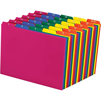 Pendaflex 40143 Top Tab File Guides, Daily/1-31, 1/5 Tab, Polypropylene, Letter (Set of 31)