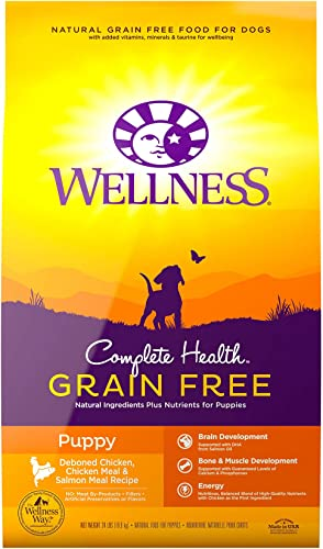 lowest Wellness Complete Health Natural Grain Free sale Dry sale Puppy Food sale