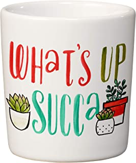 Studio M Plant Lady What's Up Succa Ceramic Stoneware Mini Succulent Planter, Cute Trendy Funny Whimsical, 3.5 x 3.25 Inches