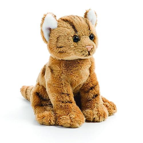 Orange Tabby Cat Amazon Com