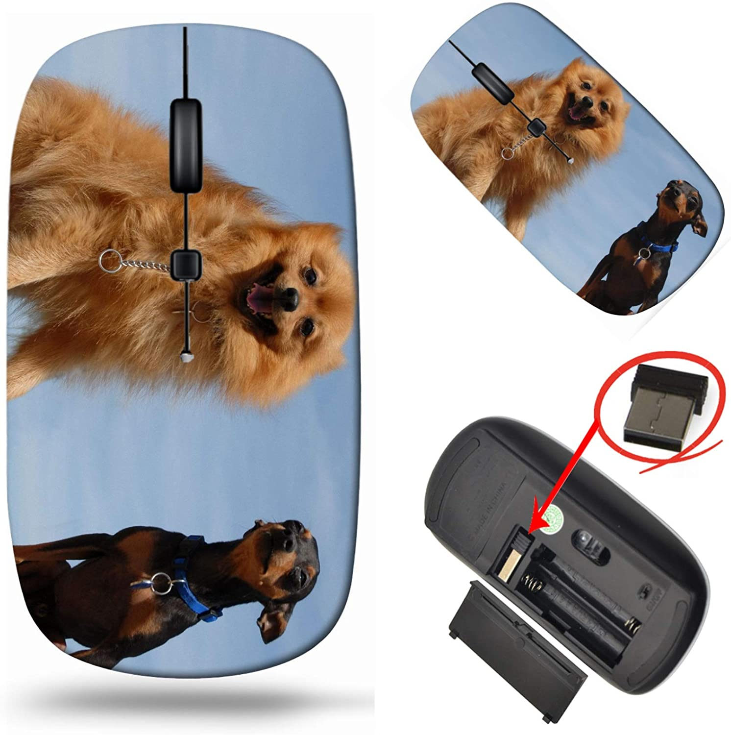 MSD Wireless Discount mail order Mouse Laptop 2.4G Travel with ...