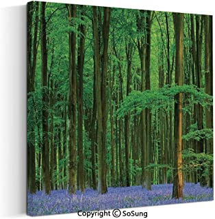 Large Canvas Prints Wall Art Oil Paintings Spring Sunshine in a Bluebell Wood Summer Dream Holiday Getaway Destination Modern Classic Giclee Pictures for Home Decor 30x30inch
