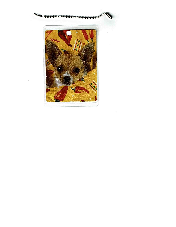 Chihuahua Luxury Super sale Dog Tag Luggage