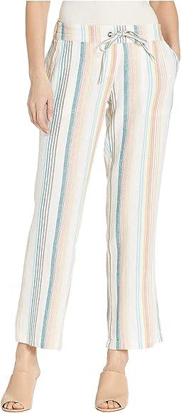 Multi Rainbow Stripe