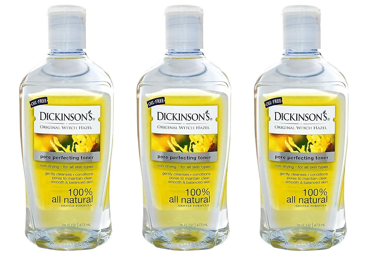 Dickinsons Original Witch Hazel Pore Perfecting Toner 16 fl. oz. (Pack of 3)