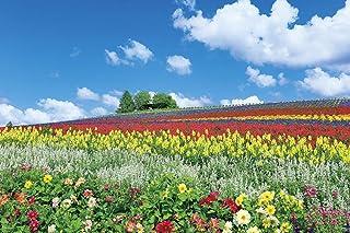 1000ピース ジグソーパズル 富良野を彩る花の丘(北海道) (50x75cm)