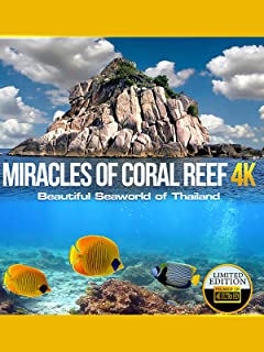 Miracles of Coral Reef