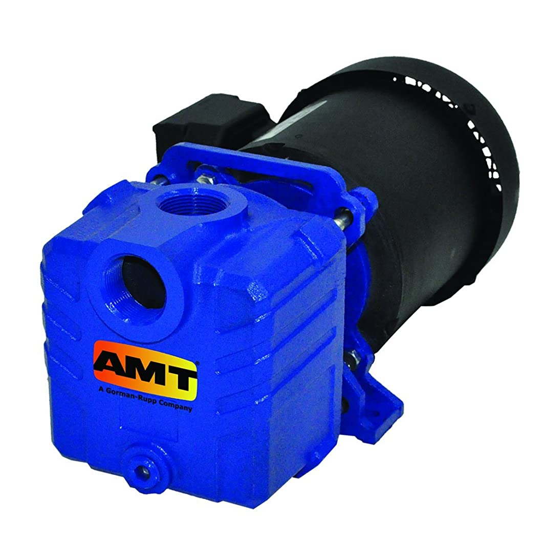 AMT Pump 2855-95 Self-Priming Centrifugal Pump, Cast Iron, 1 HP, 1 Phase, 115/230 V, Curve D, 1-1/4